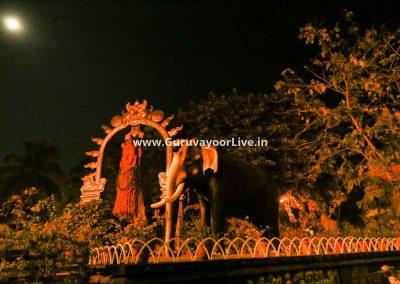 GuruvayoorLive-V2-11