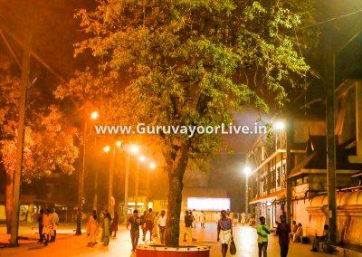 GuruvayoorLive-V2-8