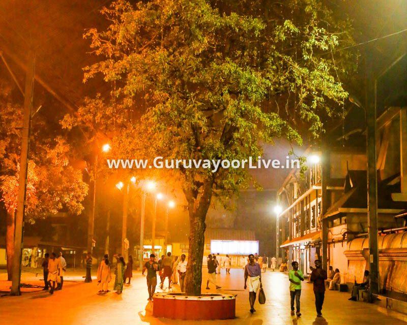 Near Guruvayur Places See
