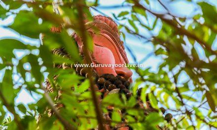 Guruvayur Temple Thrissur