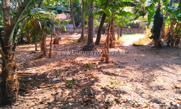10 Cent Square Plot For Sale In Mammiyoor